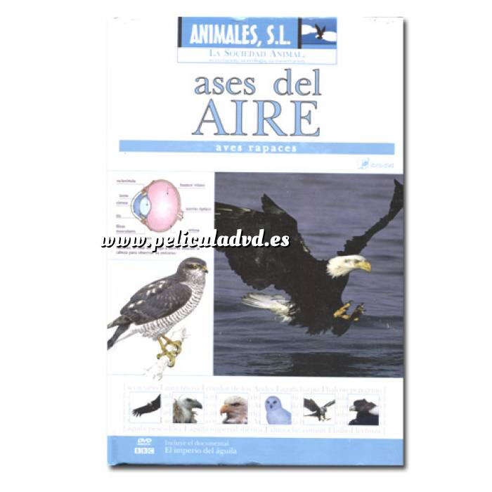 Imagen Animales S.L. DVD Animales S.L. - Ases del aire, aves rapaces (Últimas Unidades)